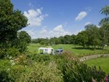 Grass camping and touring pitches at Harford Bridge Park