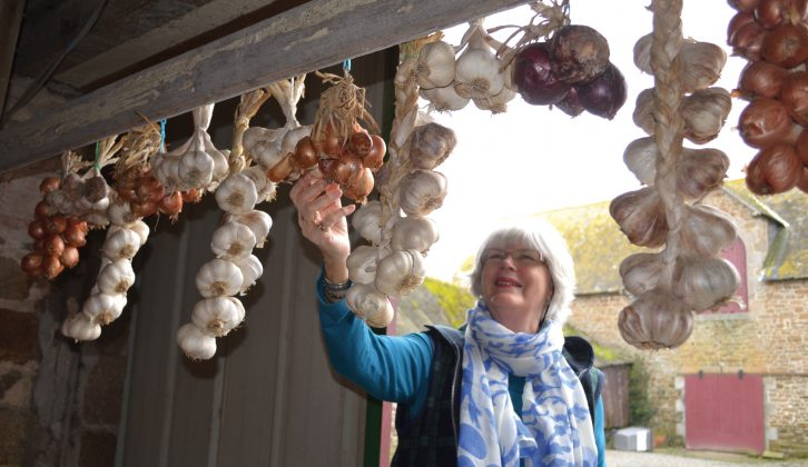 Our writers know their onions – buying local produce is fun, cheap and supports Brittany's farmers