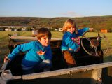 Pitch at Petruth Paddocks when you visit Cheddar Gorge – it's a very family-friendly site